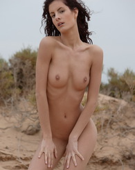 Leanna is the perfect woman to make a nude photo and video scene at the dunes